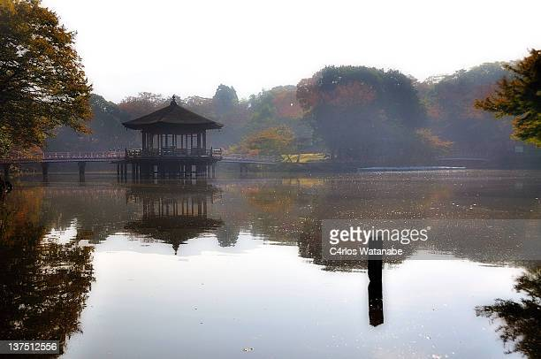 Ukimido Pavilion in Nara Park