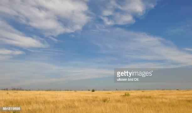Ukraine, das Donezbecken, Kurzform Donbass, Gebiet Donezk, Landschaft, der blaue Himmel und die gelbe Steppe ? ein Landschaftsbild in den Farben der...