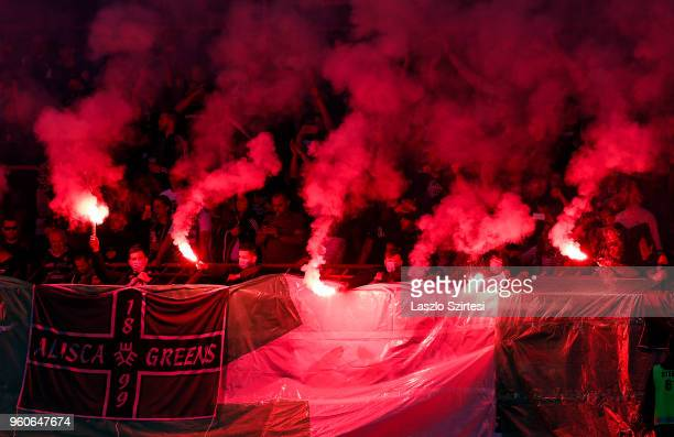Ultra fans of Ferencvarosi TC light torches and make smoke during the Hungarian OTP Bank Liga match between Budapest Honved and Ferencvarosi TC at...