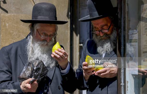Ultra-Orthodox Jews inspect etrog citrus fruits ahead of the celebration of Sukkot, the Feast of Tabernacles, in the Ultra-Orthodox neighbourhood of...
