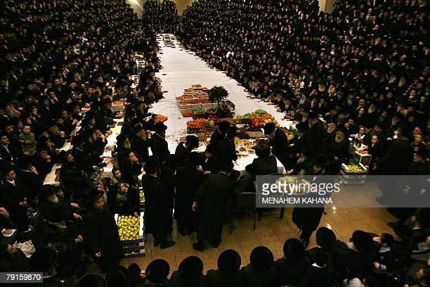 UltraOrthodox Jews of the Belz Hasidim celebrate the Jewish feast of Tu Bishvat or Tree New Year as they sit with their rabbis around a long table...