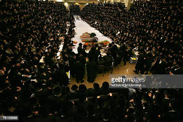 UltraOrthodox Jews of the Belz Hasidim celebrate the Jewish feast of 'Tu Bishvat' or Tree New Year as they sit with their rabbis around a long table...