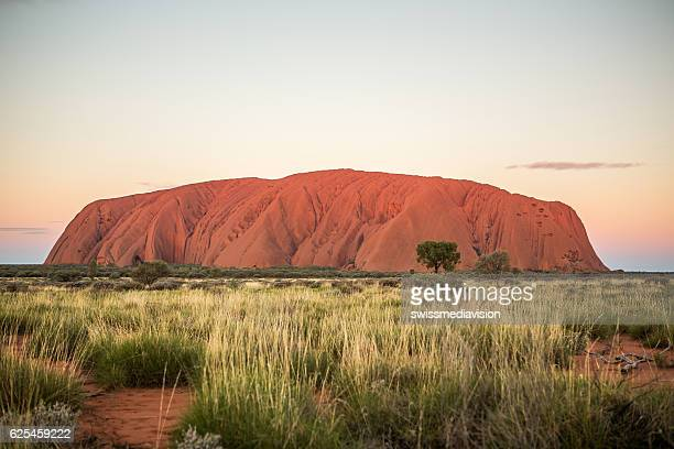 uluru at sunset, kata tjuta national park, australia - uluru stock photos and pictures