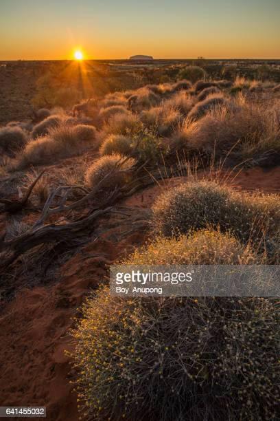 Uluru during the sunrise view from Kata Tjuta observation point in Northern Territory, Australia.