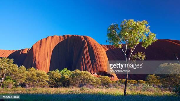 Uluru Landscape At Dawn