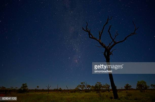 Uluru Landscape Beneath The Stars