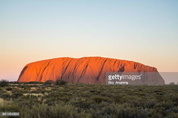 Uluru the biggest monolith rock in the world during the sunset in Northern Territory, Australia.