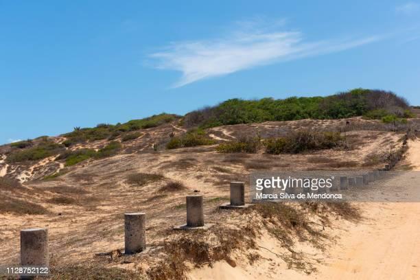 Uma trilha demarcada pela vegetação do cerrado de Jericoacoara.
