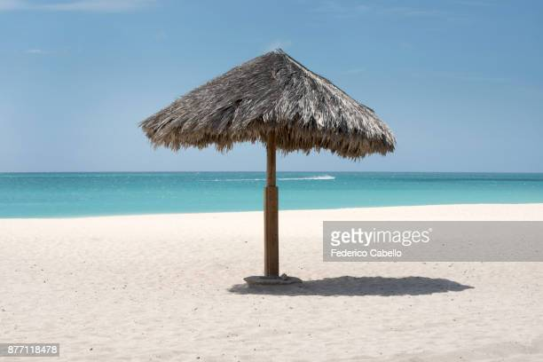 Umbrella Eagle beach. Aruba