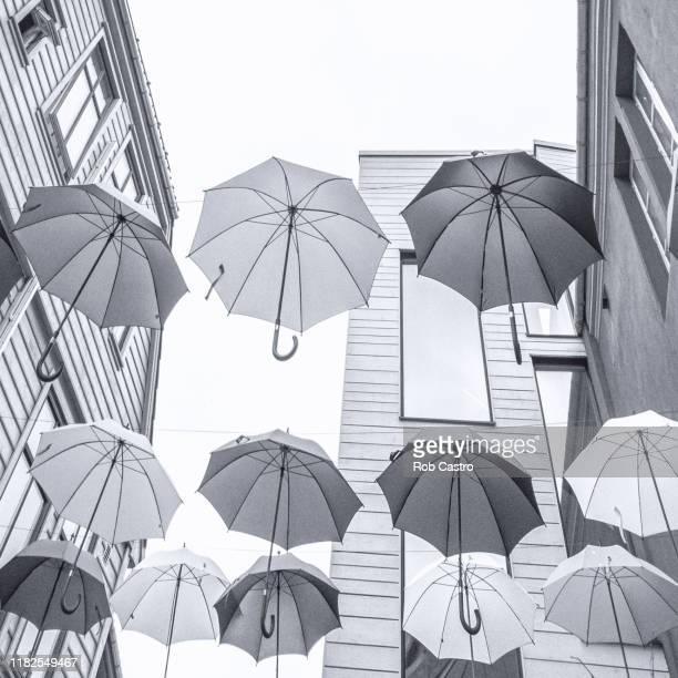 umbrellas in bergen - rob castro stock pictures, royalty-free photos & images