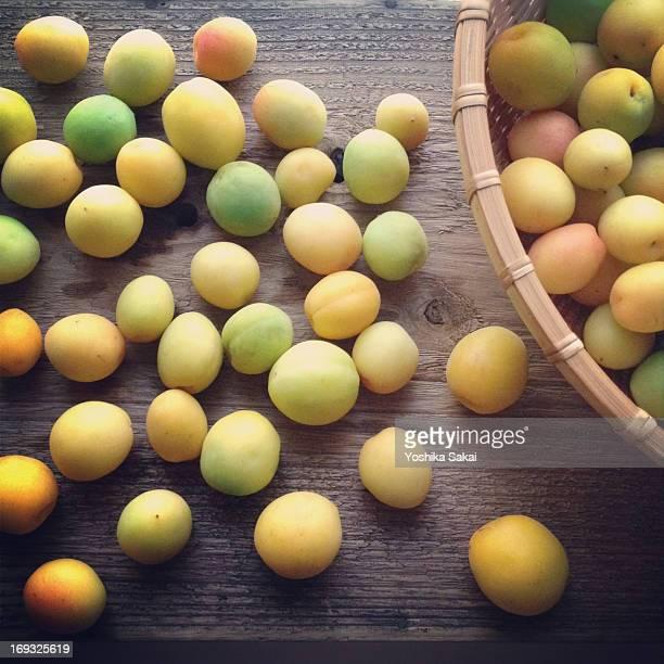 Ume (japanese apricot)