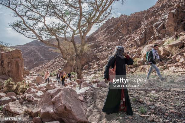 TOPSHOT Umm Yasser an Egyptian Bedouin woman guide from the Hamada tribe leads a group of hikers in Wadi elSahu in South Sinai governorate on March...