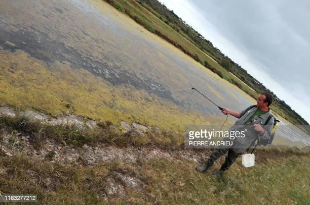 Un agent de l'unité de démoustication de l'île d'Oléron vaporise un biocide d'origine biologique, à l'aide d'un appareil à dos, le 07 juin 2010 dans...