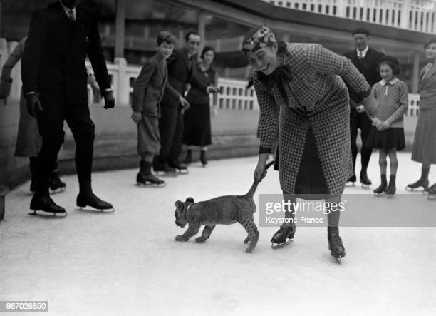 Un bébé tigre sur la patinoire de la piscine Molitor à Paris France le 23 novembre 1933