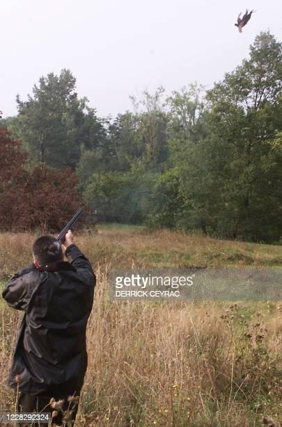 Un chasseur tire un faisan levé par son chien, le 12 septembre 1999 près de Guillac , à l'occasion de l'ouverture de la chasse dans 45 départements...