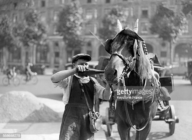 Un homme donne à boire à son cheval pendant la canicule le 2 juillet 1931 à Paris France