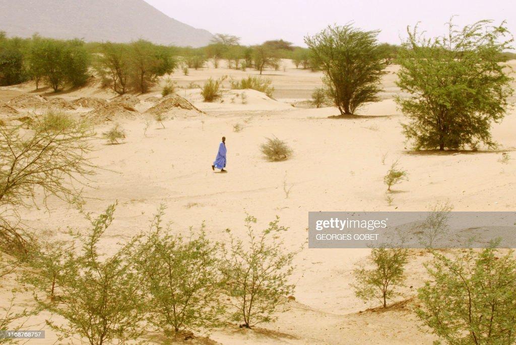 AFRIQUE-DESERTIFICATION : News Photo