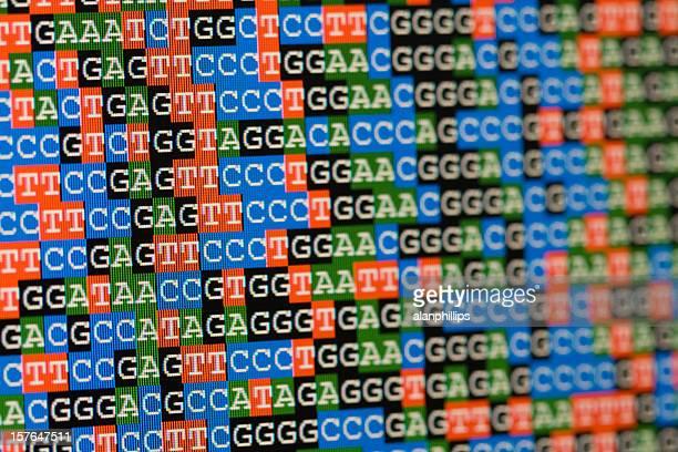 Unaligned DNA-Sequenzen wie auf einem LCD-Bildschirm