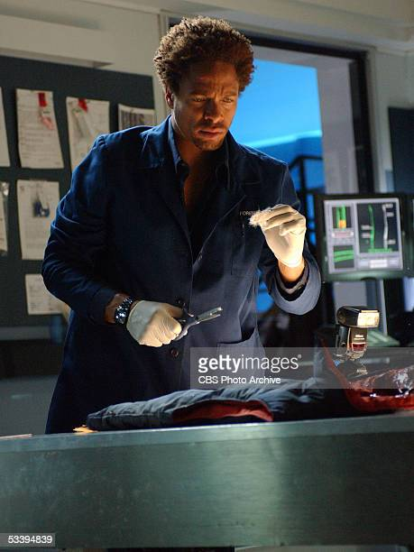 Unbearable Warrick processes the victim's clothing as the team investigates the murder of a hunter found on the outskirts of Las Vegas on CSI CRIME...
