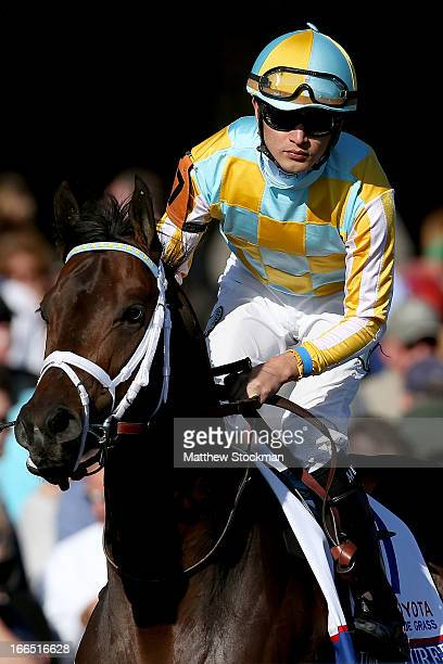 Uncaptured riden by Miguel Mena is brought to the starting gate during the 89th Toyota Blue Grass Stakes at Keenland Race Course on April 13 2013 in...