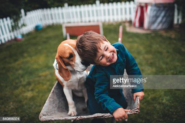 unconditional love - wheelbarrow stock photos and pictures
