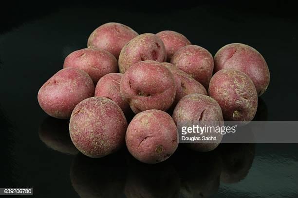 Uncooked Norland Redskin Potatoes (Solanum tuberosum)
