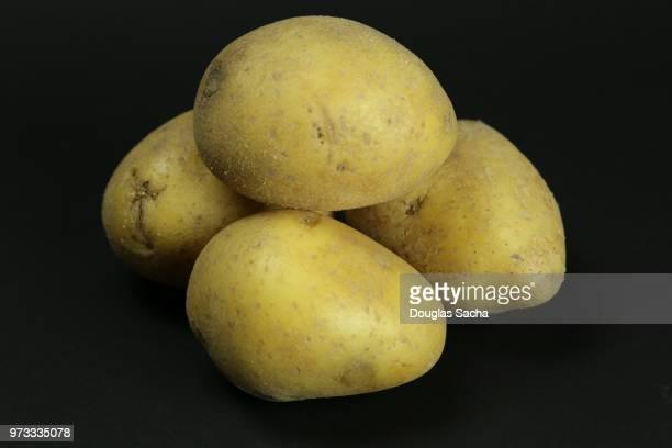 Uncooked Yukon Gold Potatoes (Solanum tuberosum)