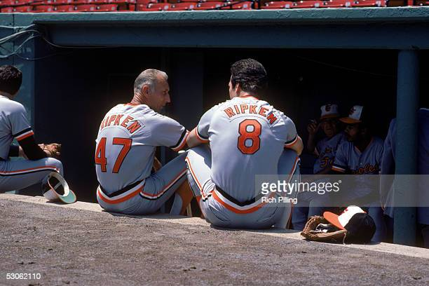 Cal Ripken Sr #47 and Cal Ripken Jr #8 of the Baltimore Orioles talk in the dugout before a season game Cal Ripken Jrplayed for the Baltimore Orioles...