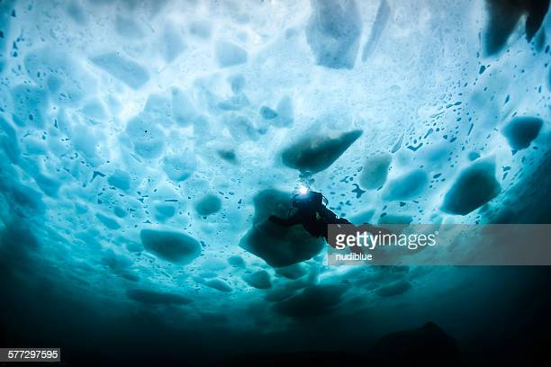under ice - diving to the ground stock pictures, royalty-free photos & images