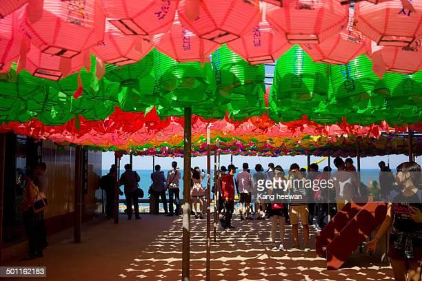 Under Lotus Lantern of Buddhist temple.
