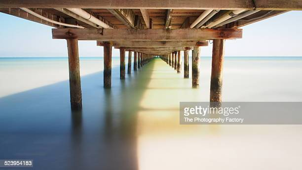under the boardwalk - bradenton stock pictures, royalty-free photos & images