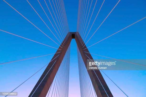 under the bridge - suspension bridge stock pictures, royalty-free photos & images