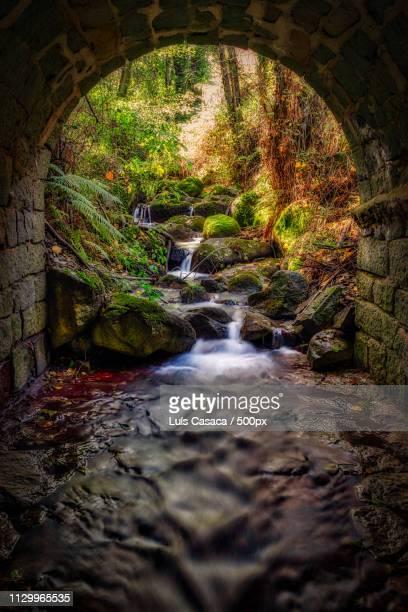 under the bridge - monchique stock pictures, royalty-free photos & images