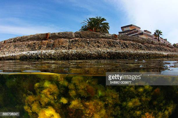 under the harbour - la manga stock pictures, royalty-free photos & images