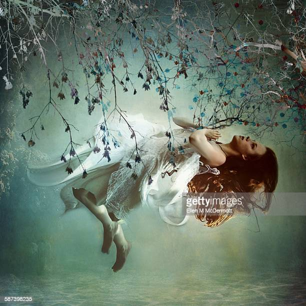 underneath - fairy stock photos and pictures