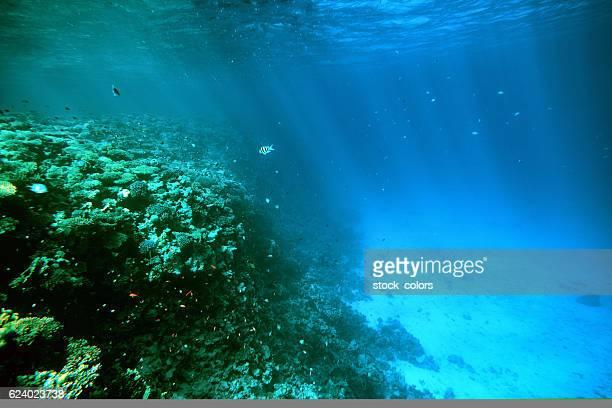 Unterwasser Hintergrund