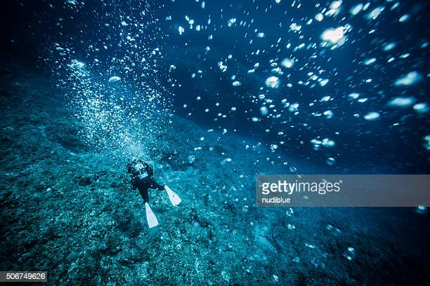 miyakojima girls 宮古島ダイビング miyakojima 17 11 11 sea bellus loading girls scuba diving blue grotto #4 - duration: 5:29 xspear-a-mental fishing 232 views.