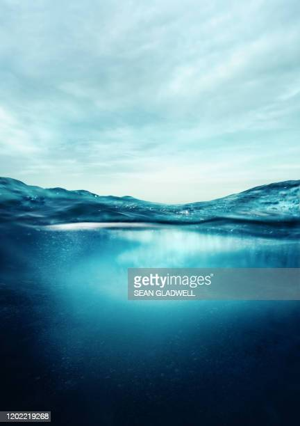 underwater and above water - mare foto e immagini stock