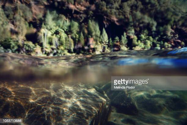 underwater and above water view of a shallow lake - halved stock pictures, royalty-free photos & images