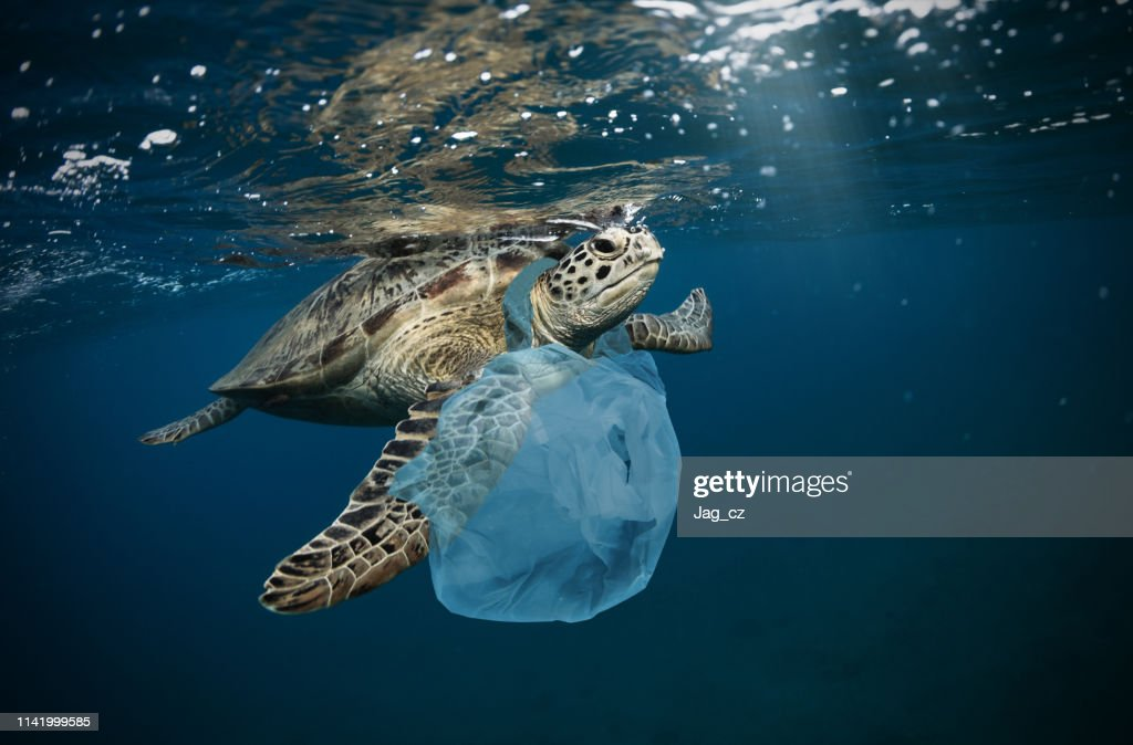 Underwater global problem with plastic rubbish : Stock Photo