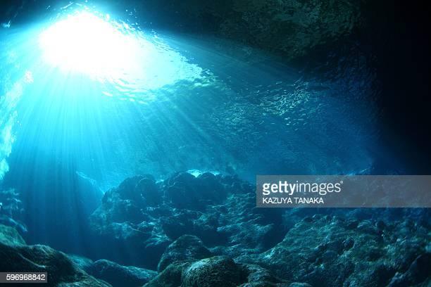 underwater grotto, saipan, northern mariana islands - northern mariana islands stock pictures, royalty-free photos & images