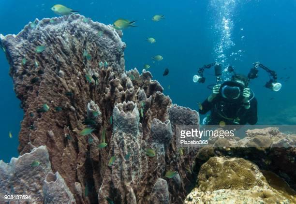 Underwater image of man photographing giant Barrel Sponge coral