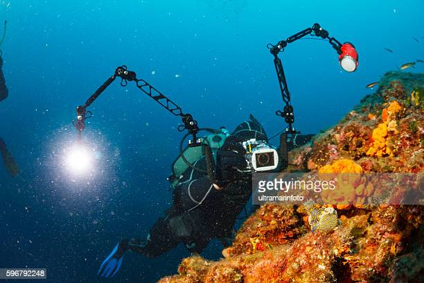 Underwater photographer  Scuba divers photographing  coral reef   Sea life Nudibranch