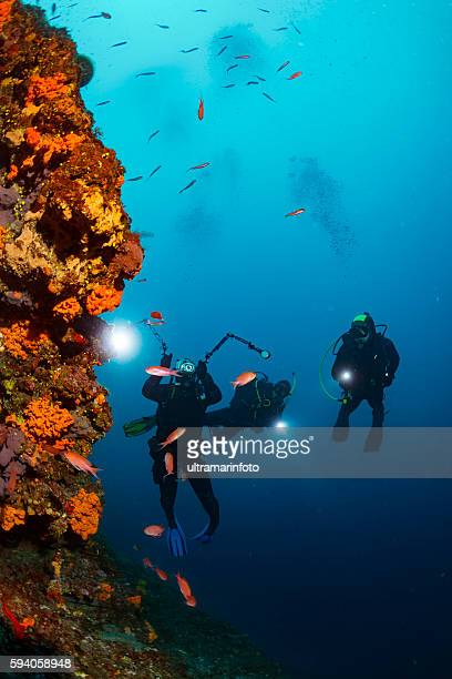 Underwater photographer  Scuba divers photographing  Explore coral reef   Sea life
