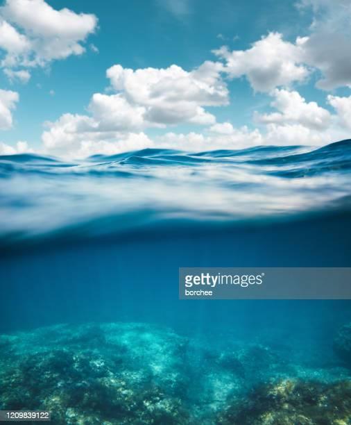 underwater - ocean floor stock pictures, royalty-free photos & images