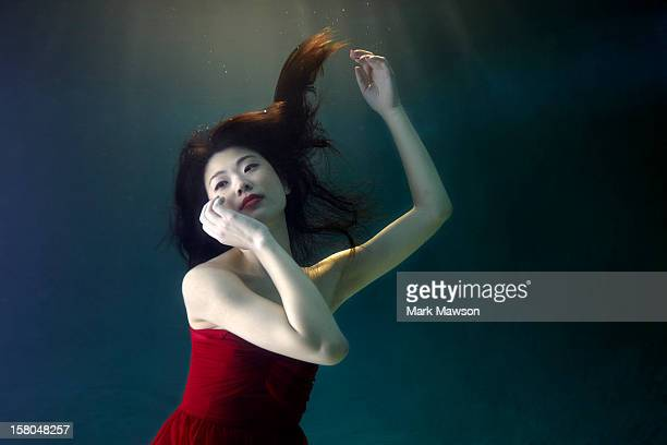 underwater - underwater stock pictures, royalty-free photos & images