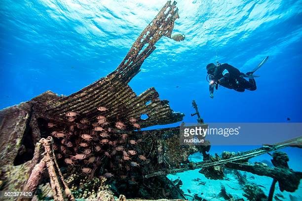underwater - northern mariana islands stock pictures, royalty-free photos & images