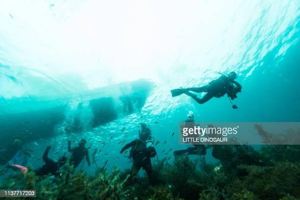 underwater scenery. boat diving. entry scene. - 浅い ストックフォトと画像