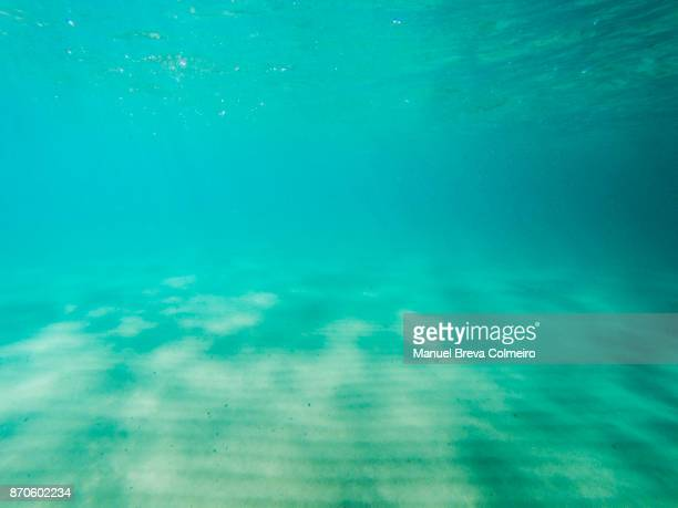 underwater scenery - ocean floor stock pictures, royalty-free photos & images