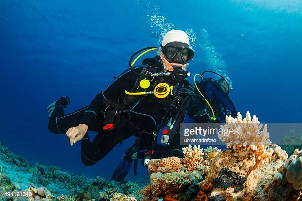 Underwater  Scuba divers explore and enjoy  Coral reef  Sea life
